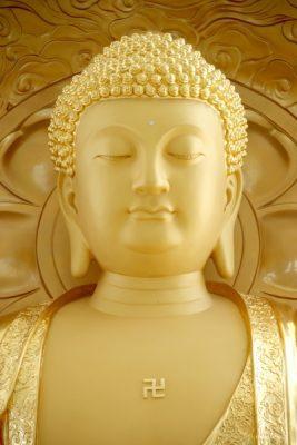 Thờ Đức Phật A Di Đà hàng ngày chiêm bái, lễ lạy niệm danh hiệu Ngài giúp hành giả tâm luôn an vui, giải thoát, mạng chung vãng sanh về cõi Cực Lạc