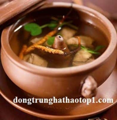 Đông trùng hạ thảo Tây Tạngnguyên con hầm thịt