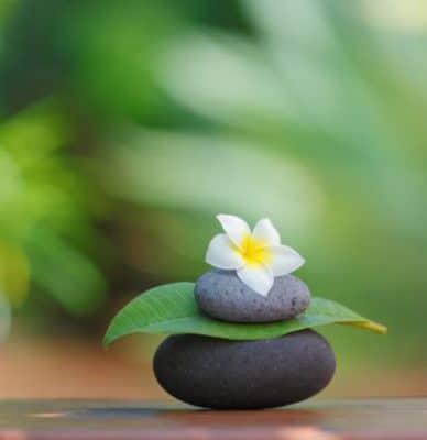Thiền cũng như những hoạt động như đánh đàn, tập luyện, vận động thể lực giúp cho bộ não thay đổi cấu trúc và gia tăng khả năng nhận thức.