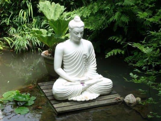 ThiềnPhật Giáolà mộtphương tiệnphát triểntâm linh. Nóđặc biệtchuyên vềrèn luyệntâm, một hợp thể quan trọng nhất trongtoàn thểcon người.