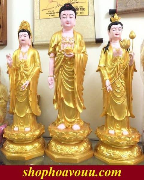 Tay Phuong Tam Thanh Sen Vang
