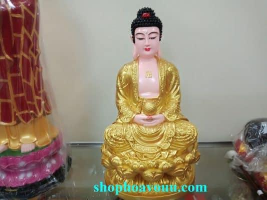 Bảy vị Phật Dược Sư tạo ra một ý định rất mạnh mẽ để trở nên giác ngộ