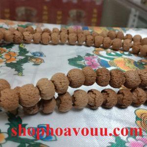 Bồ Đề Liên Hoa (Lotus Bodhi) 10 li