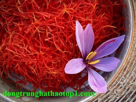 Saffron Tây Tạng - gia vị đắt nhất trên thế giới